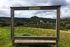 Cyklobobule 2020 - Falkenstein view (A)